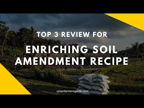 Top 3 Enriching Soil Amendment Recipe: Features & Review