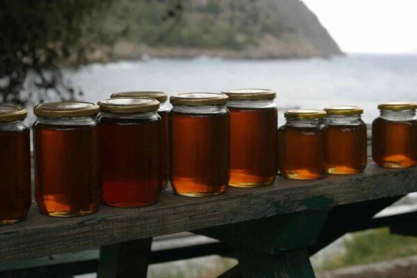 The basics of Honey Marketing How To Market Your Honey