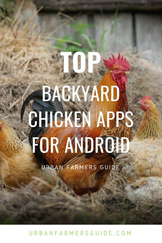 Top BackYard Chicken Apps for Android