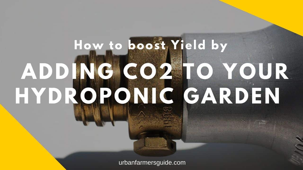 Boost Yield by Adding CO2 to Your Hydroponic Garden (CO2 Injectors)