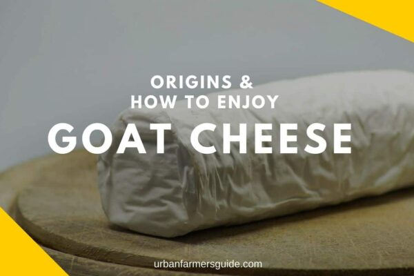 How To Enjoy Goat Cheese