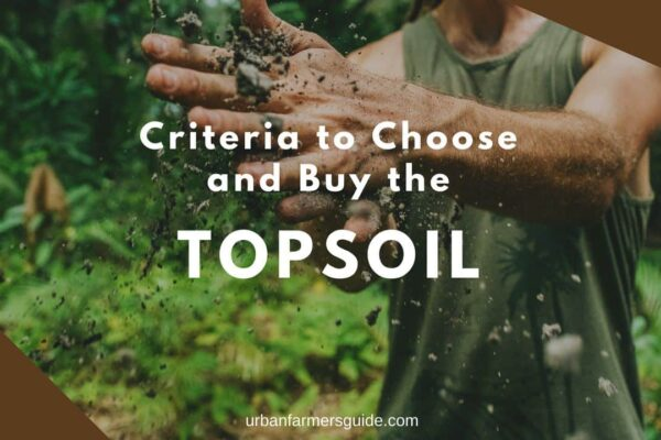 TopSoil _ Criteria to Choose and Buy the TopSoil