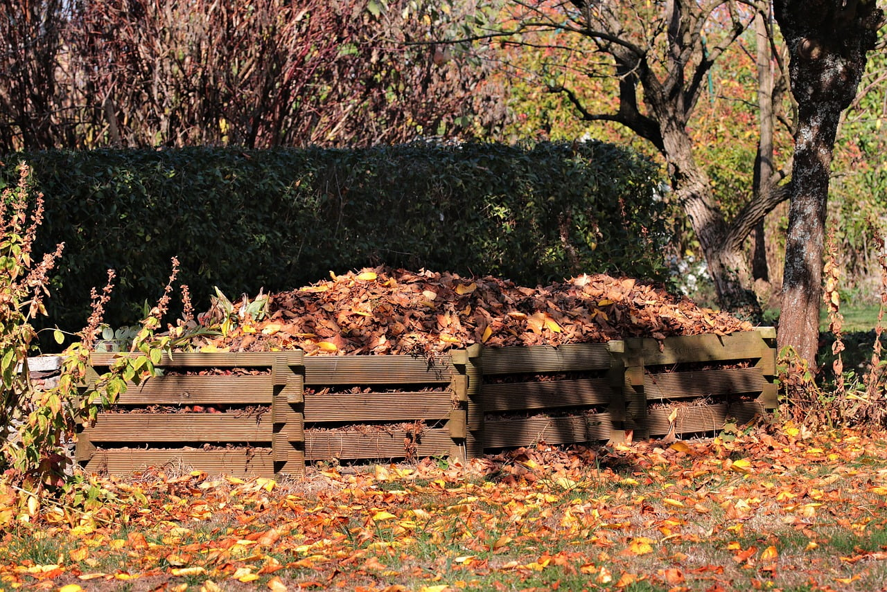 Worm Composting The Beginner Guide To Vermicomposting