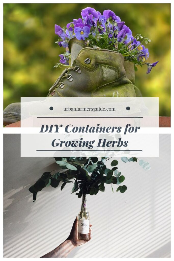 DIY Containers for Growing Herbs Pinterest