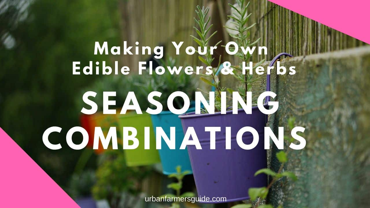 Making Your Own Seasoning Combinations from Edible Flowers and Herbs