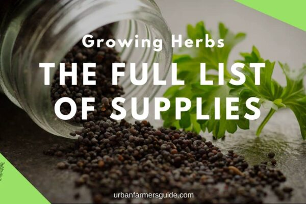 The full list of Supplies You Need to Grow Herbs