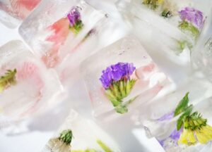Different Ways to Use Edible Flowers Ice Cubes