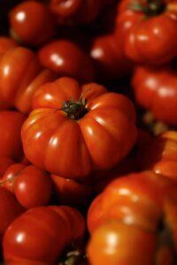 Heirloom Tomatoes Plant