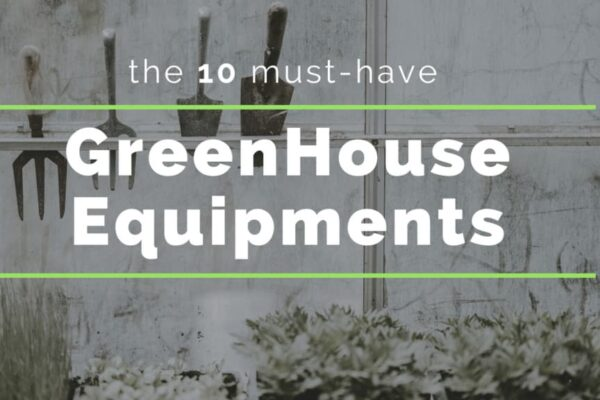 The 10 must-have GreenHouse Equipments for More Productivity Thumb