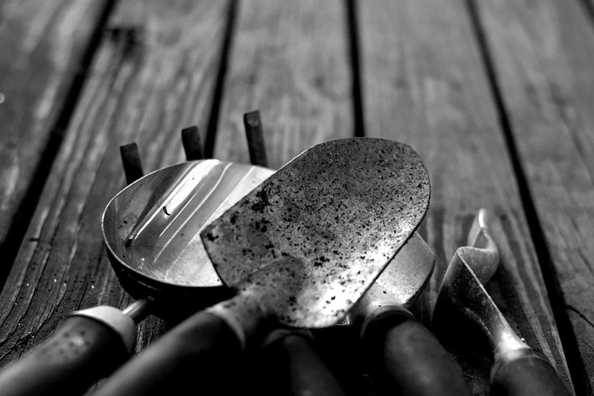 The Beginner Guide to Gardening Tools Maintenance
