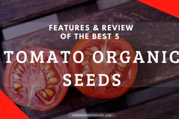 The Best 5 Tomato Organic Seeds_ Features and Review