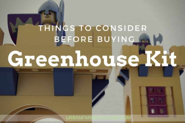 Things to Consider Before Buying a Greenhouse Kit 1