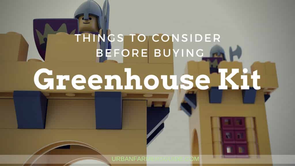 Things to Consider Before Buying a Greenhouse Kit 2
