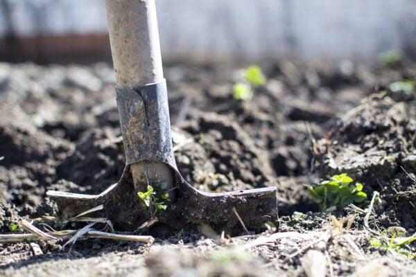 Soil Preparation For The Organic Gardener