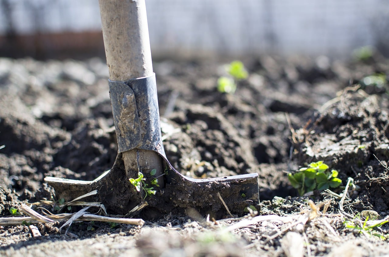 Soil Preparation For The Organic Gardener