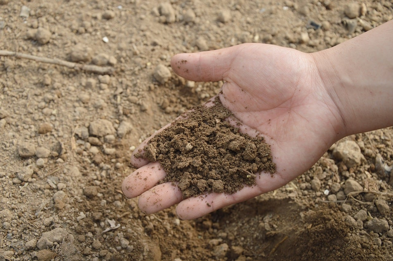 Top Soil Quality